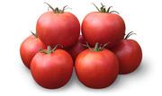 Семена Китано. Предлагаем купить семена томата KS 835 F1