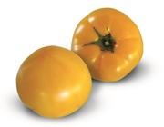 Cемена Китано.  Предлагаем купить семена томата KS 10 F1